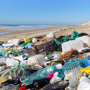 Plastic plague – Plastic waste on beach
